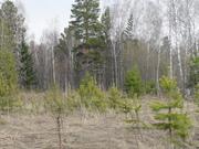 Продам земельный участок в районе п.Арийск 10 соток