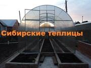 Теплица усиленная Сибирская