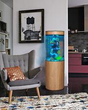 Уникальный аквариумный комплекс