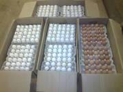 Яйцо куриное оптом,  гост 31654-2012