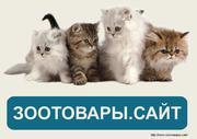 Интернет магазин товаров для животных Зоотовары.сайт