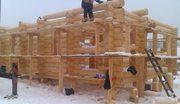 Строительство. Бревенчатые дома ручной рубки и брусовые.  2729480