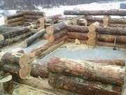 Строительство,  доставка сруба дома,  бани из Красноярска по России.